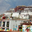 Potala — Stock Photo