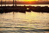 Barcas — Foto de Stock