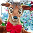 Reindeer — Stock Photo #8313626