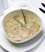 Yoğurt üzerine soğuk rus sebze çorbası — Stok fotoğraf