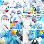 Collage. Science Team — Stock Photo