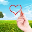 Royalty-Free Stock Photo: The drawn heart