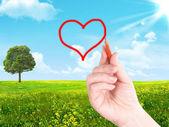 Ritade hjärtat — Stockfoto