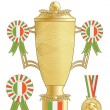 Ireland football trophy — Stock Vector