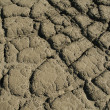 Royalty-Free Stock Photo: Mud cracks
