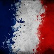 France flag — Stock Photo #10459517