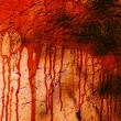 Blood stained wall - Stock Photo
