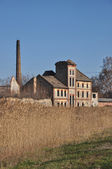 Old ruined factory — Stock Photo