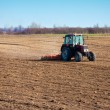 Stock Photo: Seeding onion