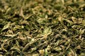 Dry pepermint — Stock Photo