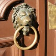 Door handle in the form of a bronze lion's head with a ring — Stock Photo
