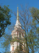 The bell tower of the Cathedral of Holy Cross Cossack. St. Petersburg — Stock Photo