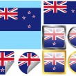 Flag Set New Zealand — Stock Vector
