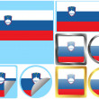 Flag Set Slovenia — Stock Vector