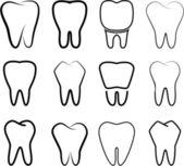Conjunto dos dentes estabilizados em um fundo branco. — Vetorial Stock