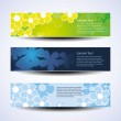 Vector Set of Three Banner Designs With Flowers — Stock Vector #8038628