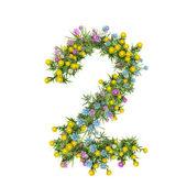 Número 2, alfabeto flor aislado en blanco — Foto de Stock