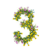 Number 3, flower alphabet isolated on white — Stock Photo