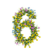 Number 6, flower alphabet isolated on white — Zdjęcie stockowe