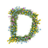 Letter D, flower alphabet isolated on white — Stock Photo