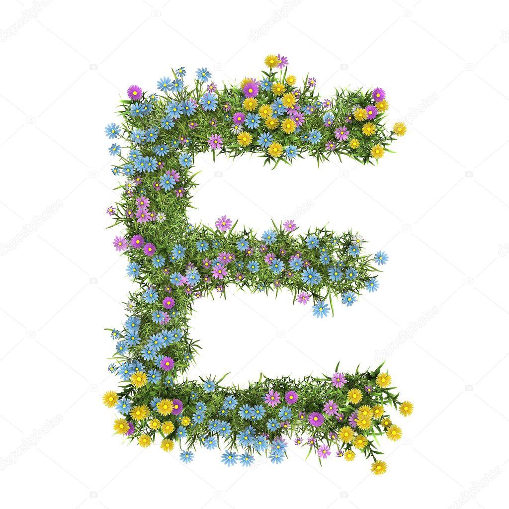Фото цветка на букву е