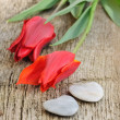 Red tulips and hearts of stone — Stock fotografie