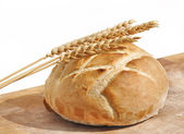 Loaf of bread and wheat ears — Stock Photo
