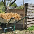 Stock Photo: Compost bin and wheelbarrow