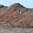 Pile of manure deposited in a field — Stock Photo
