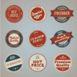 Set of vintage styled premium quality labels — 图库矢量图片