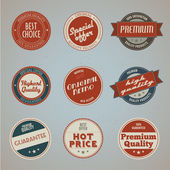 Set of vintage styled premium quality labels — Stock Vector