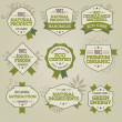 Set of natural labels — Stock Vector #9976491