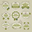 Set of natural labels - Stock Vector