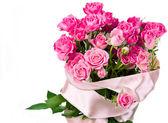 Flores rosa sobre blanco — Foto de Stock