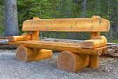 ヨホ国立公園、カナダでかわいいベンチ — ストック写真