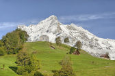 Wetterhorn — Stock Photo