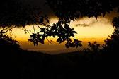 Jungle Sunset — Stock Photo