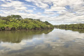 Tempisque River — Stock Photo