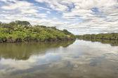 Tempisque River — Stock Photo