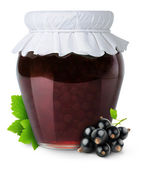 Black currants jam — Stock Photo