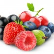 Fresh berries — Stock Photo #8731232