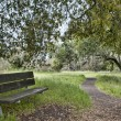 Nature trail with bench — Stockfoto