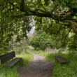 Nature trail with bench — Stock Photo #10247545