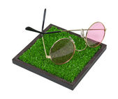Rose Colored Glasses on The Grass — Stock Photo