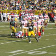 Aaron Kampman of the Green Bay Packers Defense Celebrates - Stock Photo