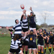 A Lineout in a Women's College Rugby Match - Stock Photo
