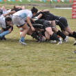 Stock Photo: A Scrum in a Women