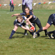 Player About to Pass the Ball After a Scrum in a Women - ストック写真