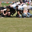 A Scrum in a Women's College Rugby Match - Stock Photo