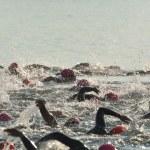 Women Competing in Open Water Swim Race — Stock Photo